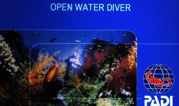 adventures in diving manual pdf